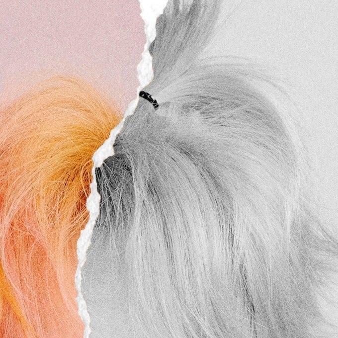 v apple hair